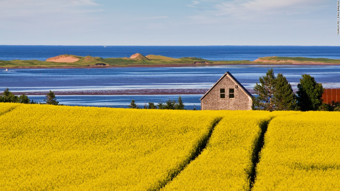 <strong>Springbrook, Prince Edward Island: </strong>No shortage of scenes like this on PEI. What Canada's smallest province lacks in size is made up for in stunning landscapes and incredible food.