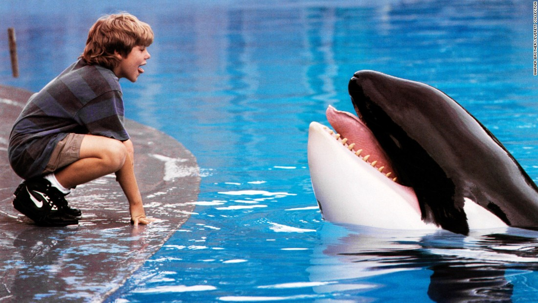 "<strong>""Free Willy"":</strong> Jason James Richter stars as a boy who befriends an orca at an amusement park. <strong>(Hulu) </strong>"