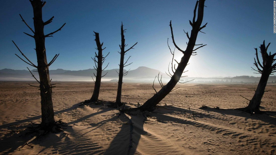 Bare sand and dried tree trunks stand on May 10 at the Theewaterskloof Dam.