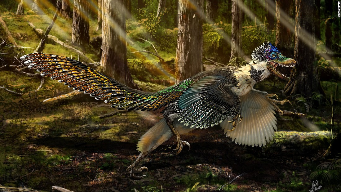 "He previously teamed up with the American Museum of Natural History on an exhibit titled ""Dinosaurs Among Us"" which spotlights dinosaurs and birds."