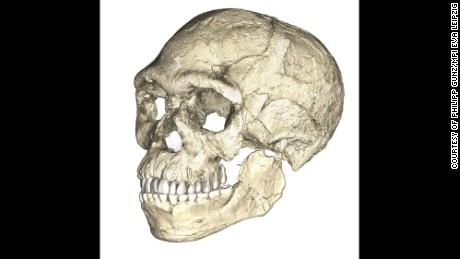 Oldest Homo sapiens fossils discovered