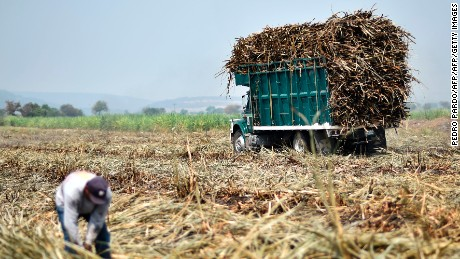 Workers load a truck with sugar cane in Atencingo, Puebla state, southern Mexico on May 11, 2017. Mexico has until June 5 to reach an agreement with Washington on whether or not sugar will continue to enter the US market tariff-free.  / AFP PHOTO / PEDRO PARDO        (Photo credit should read PEDRO PARDO/AFP/Getty Images)