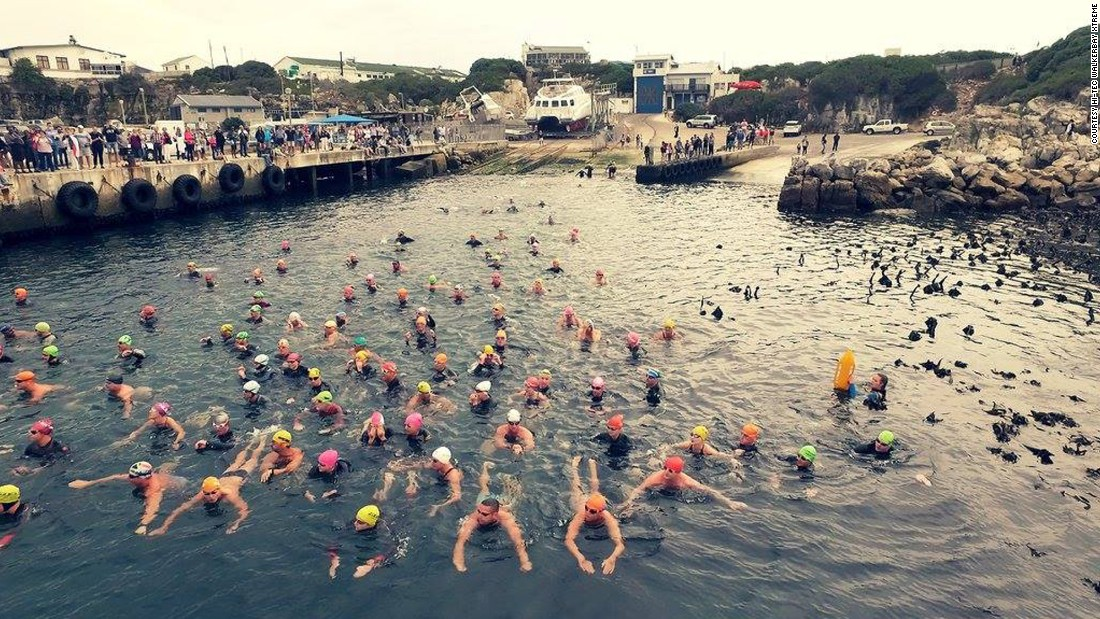 The race began at the new harbor after everyone got acclimated in the chilly water.