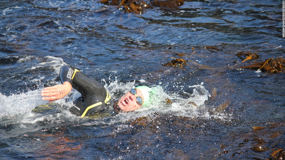 There are some natural obstacles to negotiate, namely kelp and painful urchins near the shore and at the finish line. Swimmer Paul Ingpen makes his way through the kelp.