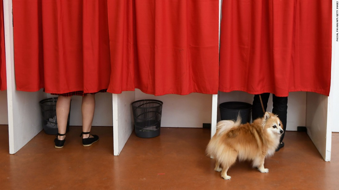 A dog waits outside a voting booth at a polling station in Castelsarrasin, France, on Sunday, June 11. It was the first round of legislative elections.