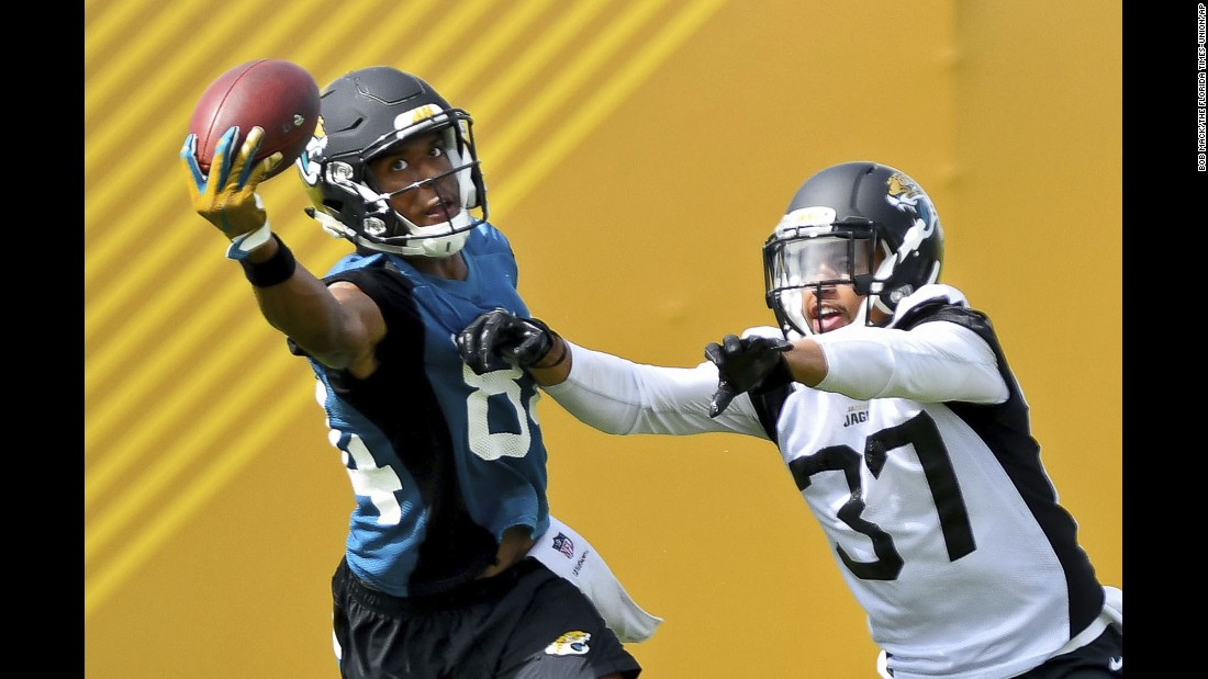 Keelan Cole makes a one-handed catch during the Jacksonville Jaguars' minicamp on Tuesday, June 13. The NFL season begins in early September.
