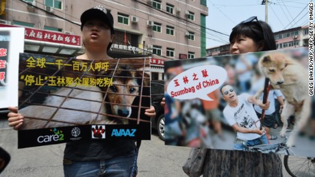 No Ban: Animal Activists Say China's Yulin Dog Meat Festival is Back
