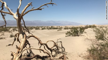 Death Valley is called the hottest, driest and lowest national park.