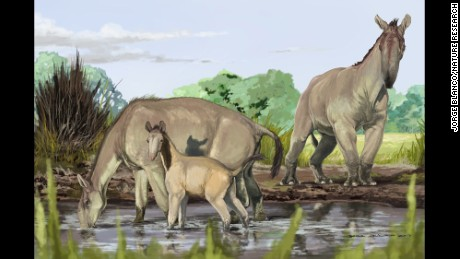Artist reconstruction of Macrauchenia patachonica.