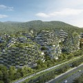 china forest city 4