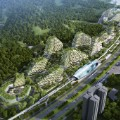 china forest city 5