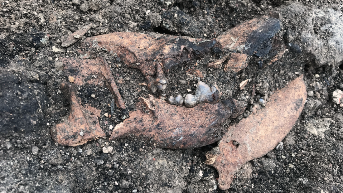 One of the most surprising finds was the skeleton of a dog who, according to archaeologist Simone Morretta, was likely stuck in the house after part of the burning ceiling fell.