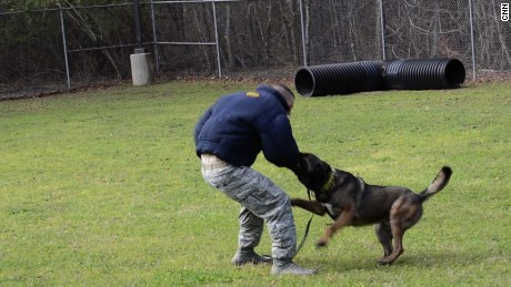 Military K 9 dog champions for change