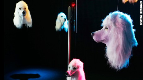 "Artificial dog heads by British artist Heather Phillipson sway in a dark room of the Schirn museum in Frankfurt, Germany, Monday, July 3, 2017. The installation called ""100 % Other Fibres"" is part of the exhibition ""Peace"" that opened last weekend. (AP Photo/Michael Probst)"