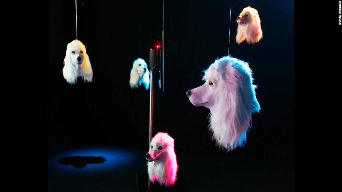 "Artificial dog heads, part of Heather Phillipson's art installation ""100% Other Fibres,"" sway in a dark room of the Schirn museum in Frankfurt, Germany, on Monday, July 3."