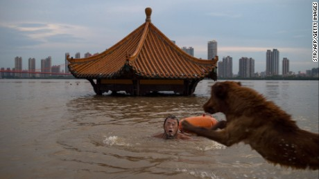 This picture taken on July 5, 2017 shows a man swimming with his dog in the Yangtze River along the River Beach Park in Wuhan, Hubei Province after heavy rains caused the water levels to rise. 