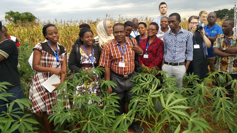 Dr. Joseph Ndunguru (center) in Malawi with colleagues working to identify and control cassava disease.