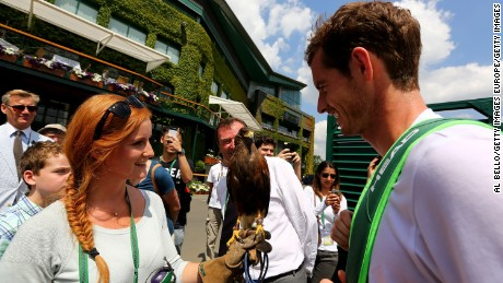 Andy Murray comes face-to-face with Rufus at Wimbledon back in 2014.
