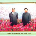 2008-20th-anniversary-of-naming-of-Kimjongilia