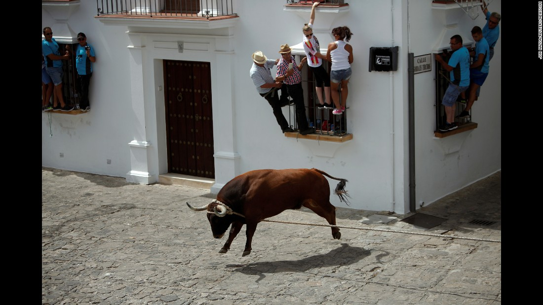People hold onto windows to avoid a bull named Trompetero during the Toro de Cuerda, or Bull on Rope, festival in Grazalema, Spain, on Monday, July 17. Three bulls restrained by a rope are allowed to run through the streets of the village during the annual festival.