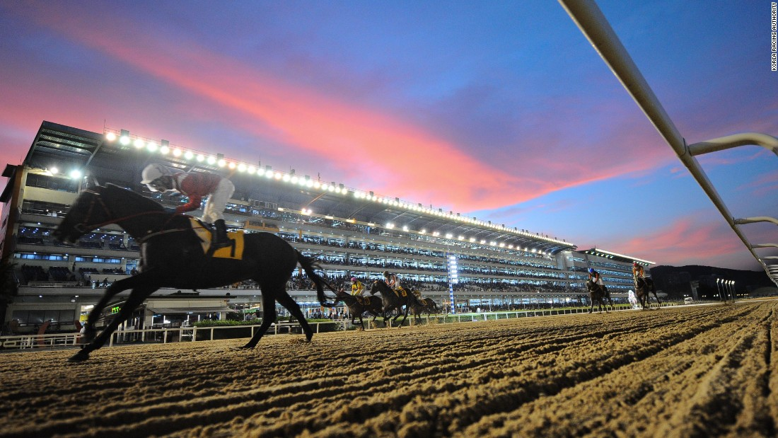 edition.cnn.com - Henry Young - Theme parks, pop concerts -- Inside the world of South Korean horse racing