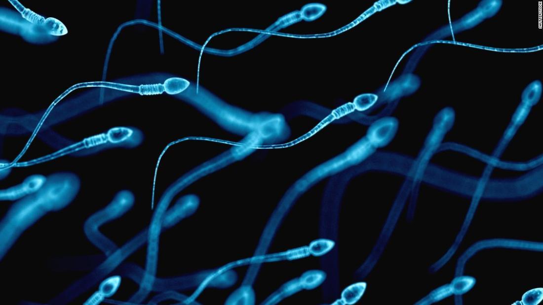 170724153206-spermatozoa-super-tease