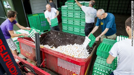 Dutch poultry farmers throw out eggs potentially contaminated by the insecticide Fipronil earlier this month.
