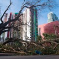 16 Irma florida 0911