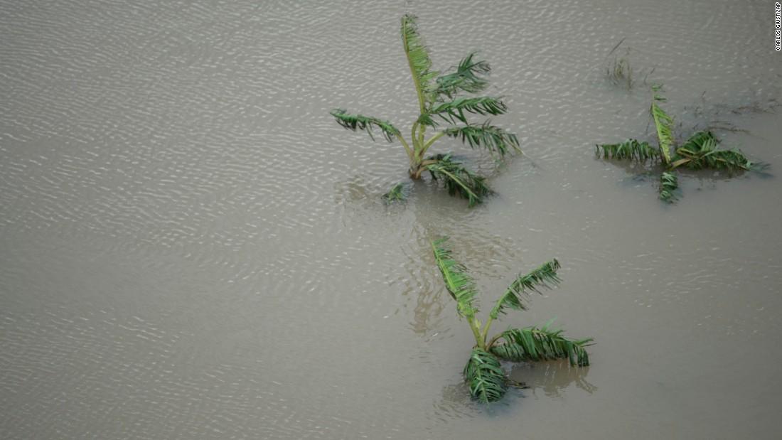 Puerto Rico dam: Evacuations begin along river