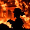 05 california wildfires 1009