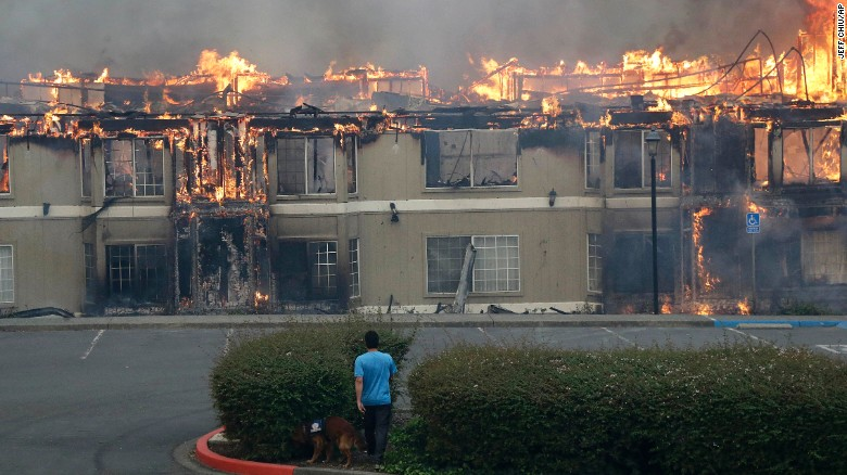 Rudy Habibe, from Puerto Rico, and his service dog Maximus walk Monday toward a burning building at the Hilton Sonoma Wine Country hotel in Santa Rosa, where he was a guest.