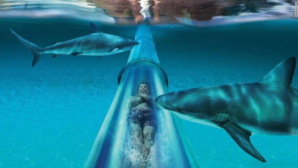 12 Of The Best Water Parks In The World Cnn Com
