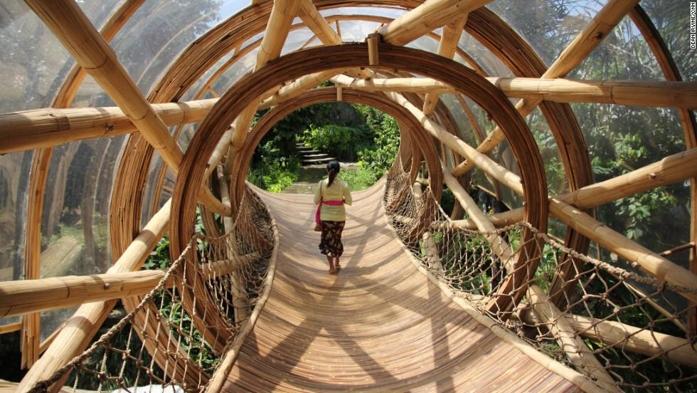 Bali Tree house