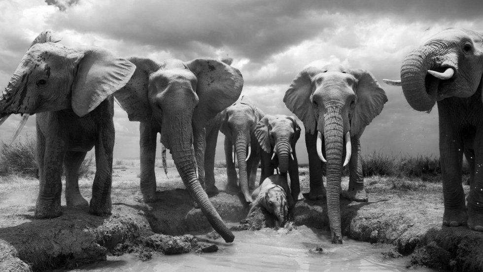 Gallery: 20 Years Of Photographing In Africa