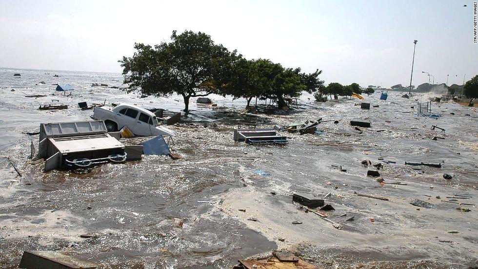 Essay on tsunami disaster