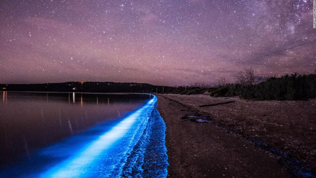 bioluminescent water - photo #12