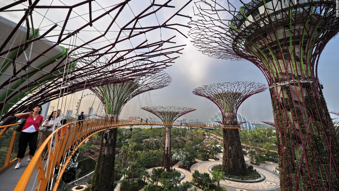 150609141700 singapore trees super 169 - The rise of the urban jungle