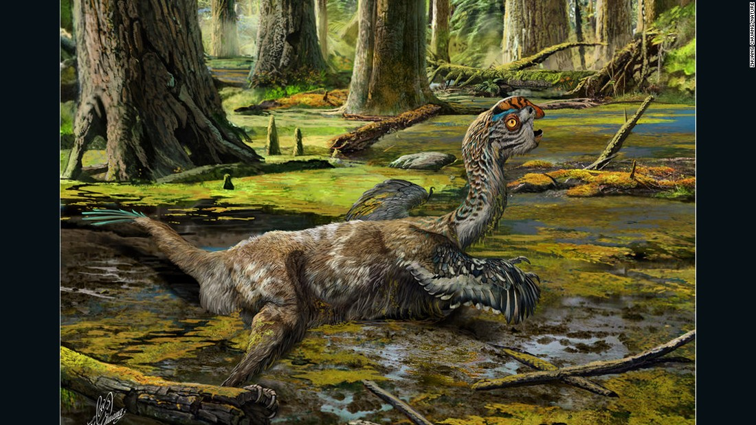 Mud Dragon Dinosaur Unearthed By Chinese Construction