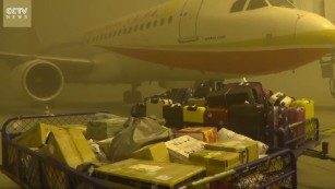 Smog strands over 20,000 at airport