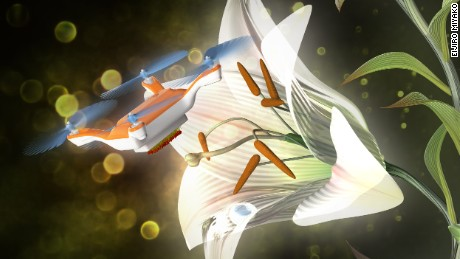 Researchers use drone to pollinate a flower