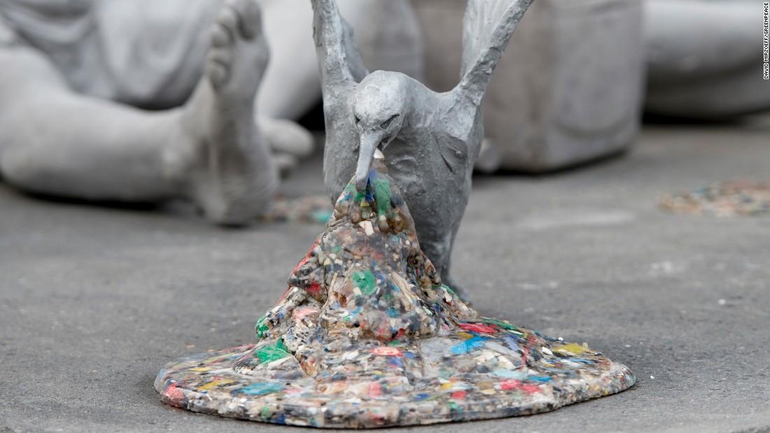 The Ocean Plastic Crisis