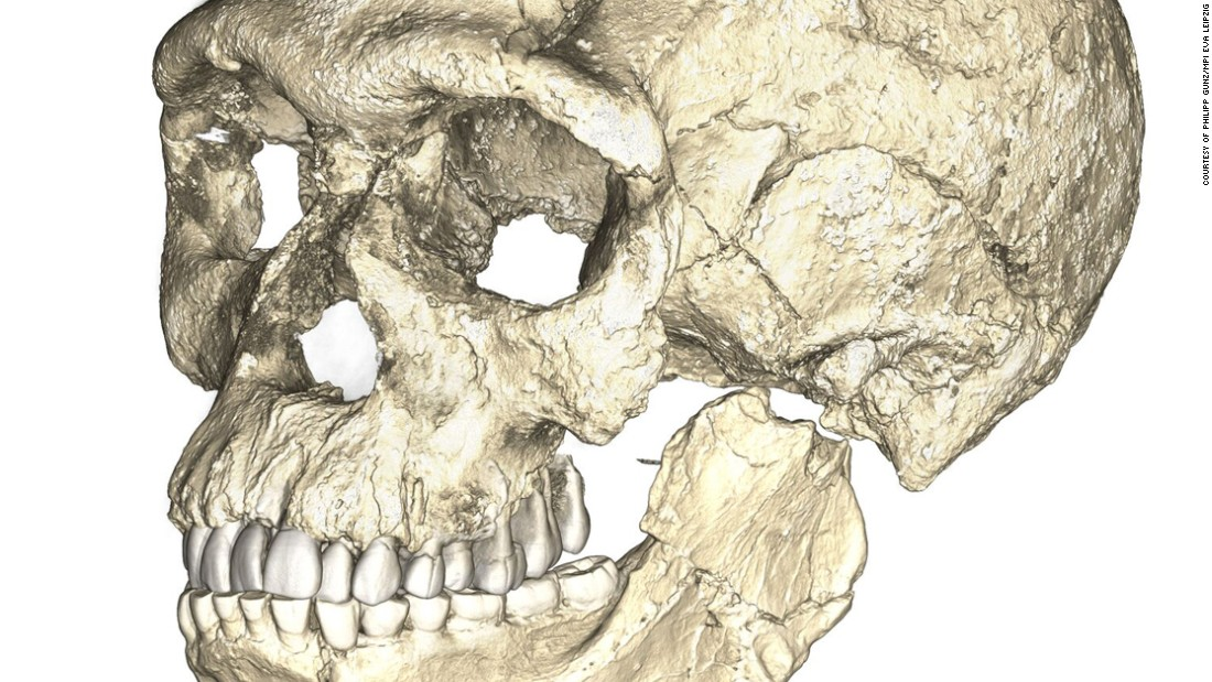 first homo sapiens found - photo #17