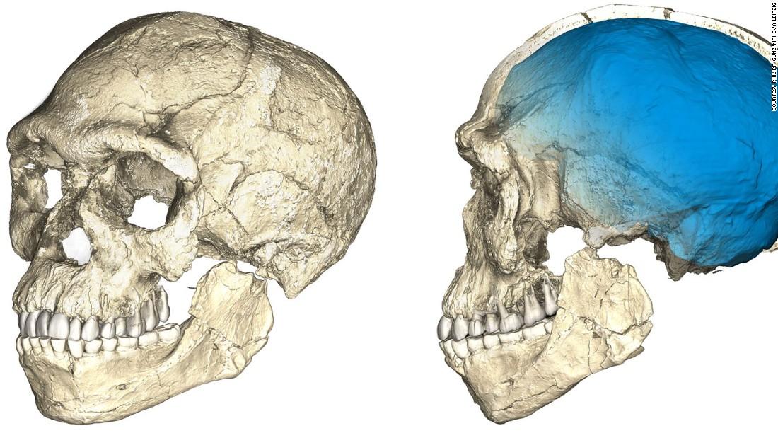 first homo sapiens found - photo #6