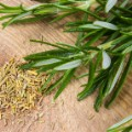 herbs and spices rosemary