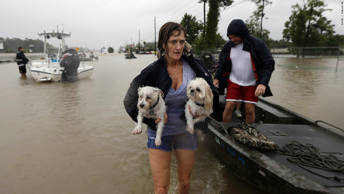 Belinda Penn holds her dogs Winston and Baxter after being rescued from their home in Spring, Texas, on August 28.